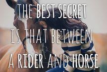 Horsecheck paardenwijsheden / Spreuken en leuke wijsheden rond paarden
