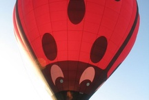 Collection-Hot Air Balloons / Photographs of hot air balloons; places for festivals