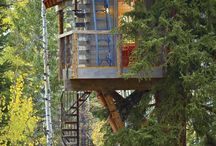 Tree Houses / Not just for kids!