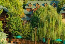 luxury eco resorts