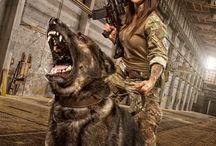 dog, gun and girl