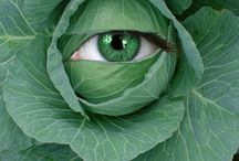 Keep One Eye On The... / I spy...with my little eye...