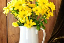 Birthday for Mom / Send a big birthday hug to Mom with a bouquet of fresh, fragrant flowers! Can't be there in person this year? Cheerful, thoughtful blooms are the next best thing! Try sunny yellow roses or daisies for a big pick-me-up, or pert pinks for a feminine treat! http://www.purplerose.ca