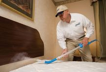 Bed Bugs Control Services / Mourier Pest Control services offers cheap, best, effective & safe bed bugs pest control in Delhi-NCR, Bed Bugs Pest Control Services Delhi. Humans unknowingly spread bed bugs with their movements and by transporting infested bedding, furniture and other materials from one place to another.