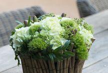 kwiaty białe i zielone