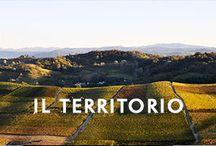 Terrotory of Piedmont