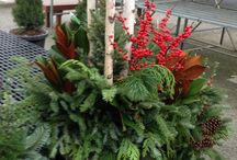 Winter Containers / We create spectacular containers to green up your winter landscape.
