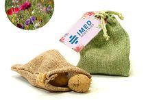 Plantas promocionales / Todo tipo de plantas promocionales para regalar en cualquier evento. Ideas de regalos originales y ecológicos