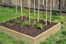 Growing the Garden