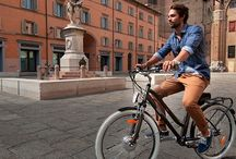 Biciclette Elettro Assistite / elenco dei modelli Wayel