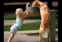 Kids and K9s / by Candy Melin
