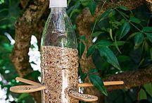 Fugle foder i plastflaske