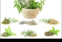 Natural Health / Natural Health