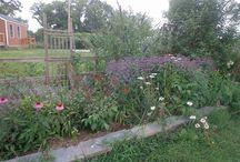 Hometalk Beautiful Garden Borders