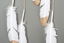 Federn . Feather