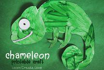 De kameleonklas