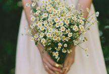 Styled Weddingshoot