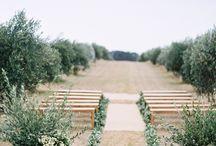 EVENTS//Wedding
