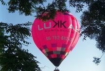 LUKKAS 2 / Rose, pink, quelle belle couleur!!!!