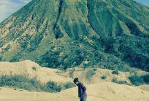 landscape traveler