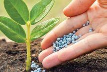 abono minerales para las plantas...