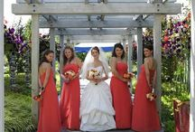 Real Bari Jay Bridesmaids /  A board dedicated to our beautiful Bari Jay Bridesmaids / by BARI JAY