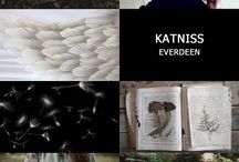 Hunger Games Aesthetic