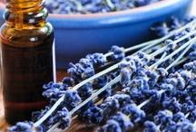 Swiss Just Latinoamérica / Aceites y cremas naturales 100%