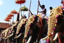 Festivales y Culturas