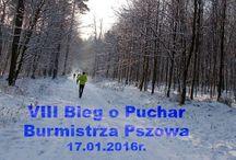 VIII Bieg o puchar burmistrza Pszowa / bieg na 12km 17. stycznia 2016r.