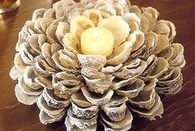 Sea Shells / Ideas
