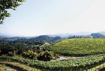 California Wine Country / California Wine Country, Napa, Sonoma, Monterey, Paso Robles, San Luis Obispo, Santa Barbara