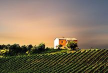 Must Go To Tuscany