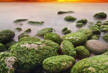Eye Candy / Nature and landscape photography