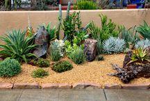 frontyard idea's