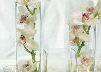 Arreglos con Orquídeas - Yugos y otras flores