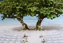 Wedding Ceremony Ideas. / Ceremony inspiration.