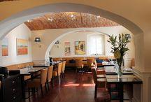 Gourmet Restaurace VILLA PATRIOT / v Mariánských Lázních    /www.villapatriot.cz