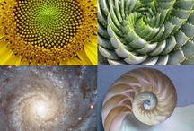 Nature and geometry