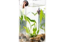 Aqua Vessel