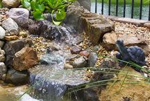 Water Features / Absolutely NOTHING in your landscape will be as beautiful, rewarding, or as soothing, as a well done Water Feature, Water Garden, or Pond. Whether it's a simple bubbling rock that the birds drink at, a small stream disappearing into a pondless basin of gravel and plants, or a beautiful waterfall spilling and rippling into a pond with colorful Koi, the sight and sound of moving water will be the highlight and focal point of your landscape.