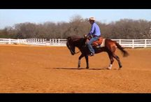 FTTack / Highquality western horsetack handpicked by Fred Thomsson and his skilled team.