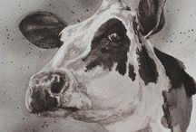 John Marshall's Cows