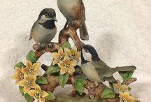sošky vtáci