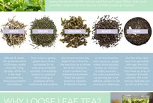 Tea 101 / all about tea, from production to tea pairings, curated by a tea sommelier