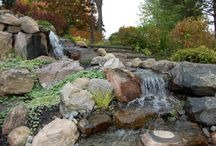 Beautiful Ponds and Other Water Features / Celebrating the beauty of ponds, waterfalls, streams, and other aquatic features.