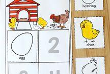 Preschool....chickens