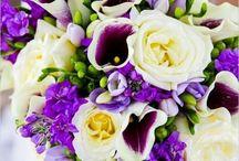 Jane May 9 2015 / by Dandie Andie Floral Designs
