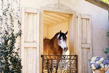 Horses with awesome barns.  / by Belinda Herwit