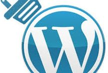 WordPress / All about WordPress, building, updating, support etc